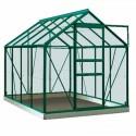 Intro Grow - Ivy - 5m