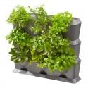 Kit mur végétal NatureUp