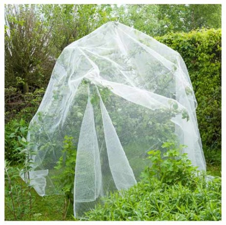 Filet anti-insectes arbres fruitiers 5,20 x 5m