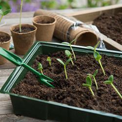 La gamme se compose de mini-serre et petits châssis pour aider au forçage de tous types de plantations (fruits, légumes, fleurs). La mise en place de votre mini-serre de forçage est instantanée, ses éléments empilables sont très faciles à déplacer et à ranger.