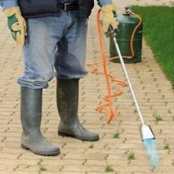 Le désherbeur thermique est la solution idéale pour anéantir les plantes indésirables de manière écologique. Un simple passage de la flamme suffit pour créer un choc thermique et ainsi anéantir les cellules des plantes. Ces plantes se dessécheront les jours d'après. Nos désherbeurs thermiques sont faciles d'utilisation, ils sont légers et se manient facilement.