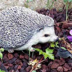 Décorez votre jardin, terrasse ou balcon avec des animaux de décoration à la finition soignée et réaliste. Ils ont été conçus pour résister aux climats extérieurs et aux intempéries. Faciles à déplacer et à entretenir, ils embelliront votre jardin au gré de vos envies.
