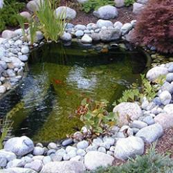 Imaginez-vous dans votre jardin, en train de profiter d'un moment de fraîcheur et de tranquillité autour de votre bassin de jardin, où les poissons, les végétaux et les fontaines de bassin apportent un côté original au point d'eau.  Notre large gamme se compose de bassins préformés ou de bâches étanches, allant de 145 à 3800 litres. Vous êtes sur de trouver le bassin qui se mariera parfaitement avec votre jardin. Vous pouvez acheter le bassin seul et y ajouter unecascade (pour faire circuler l'eau de votre bassin) et lesaccessoires de votre choix, ou bien opter pour un kit bassin préformé complet, avec une cascade, une pompe de bassin, de la décoration et tout le matériel nécessaire à la création de ce point d'eau unique. En choisissant l'un de nos kits complet, vous êtes sur de ne pas vous tromper dans le choix du système de filtration, adapté au volume de votre bassin. Laissez-vous surprendre par les nombreuses formes de nos bassins préformés et choisissez celle qui s'accordera au mieux avec votre jardin. Ils sont fabriqués en plastique renforcé de fibre de verre ou en HDPE (polyéthylène très résistant). L'installation d'un bassin de jardin est simple. Dans un premier temps, il faut délimiter au sol les contours du bassin et ses 3 niveaux de profondeur. Ensuite, creusez le sol tout en contrôlant la profondeur de chaque niveau. Installez alors le bassin et remplissez l'espace vide avec du sable. N'hésitez pas àl'agrémenter avec des cascades, des plantes, des figurines et des poissons.